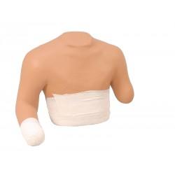mannequin_de_bandage_des_moignons_supérieurs