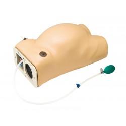 Mannequin examen de grossesse avec simulation des battements de cœu