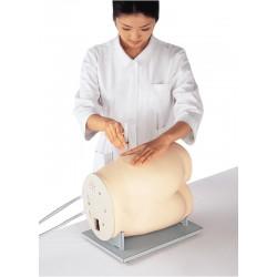 Simulateur d'injection intramusculaire de glutéal