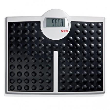 Balance électronique Seca 813 Robusta