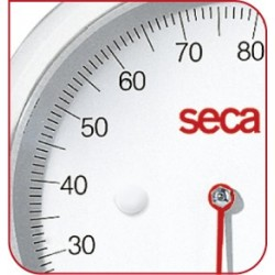 BALANCE MÉCANIQUE SECA  761